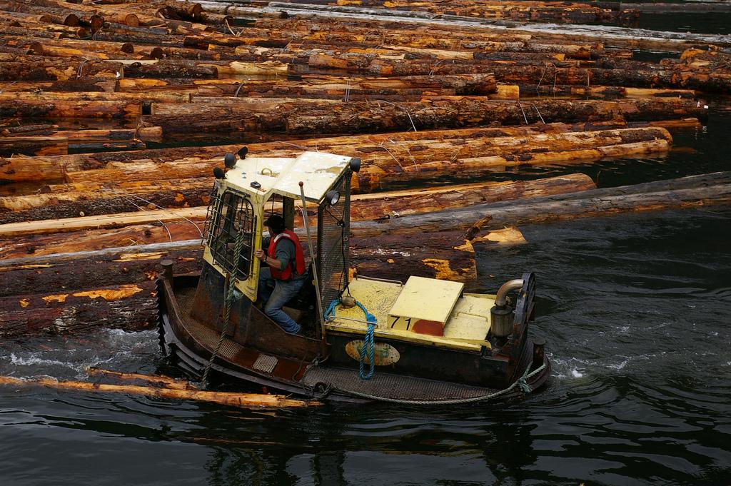 Log boom