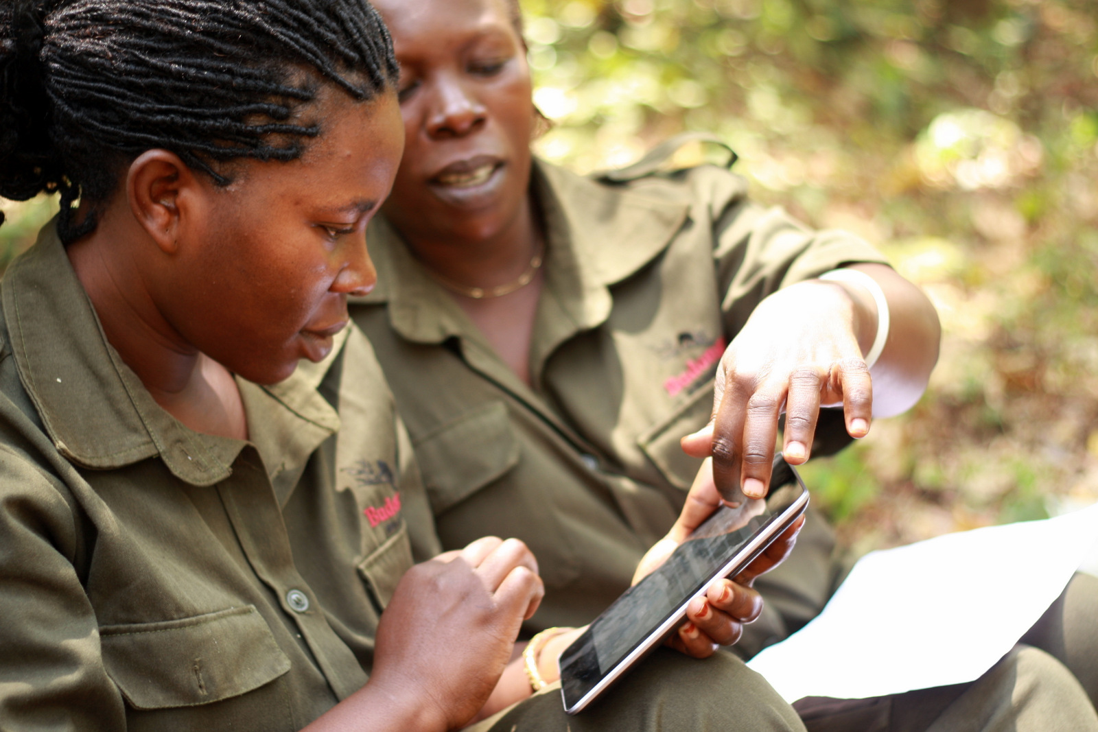 Two forest monitors working on tablets