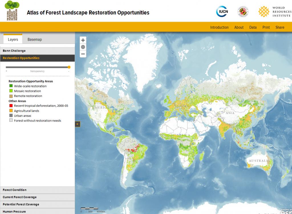 Global Atlas of Forest Landscape Restoration