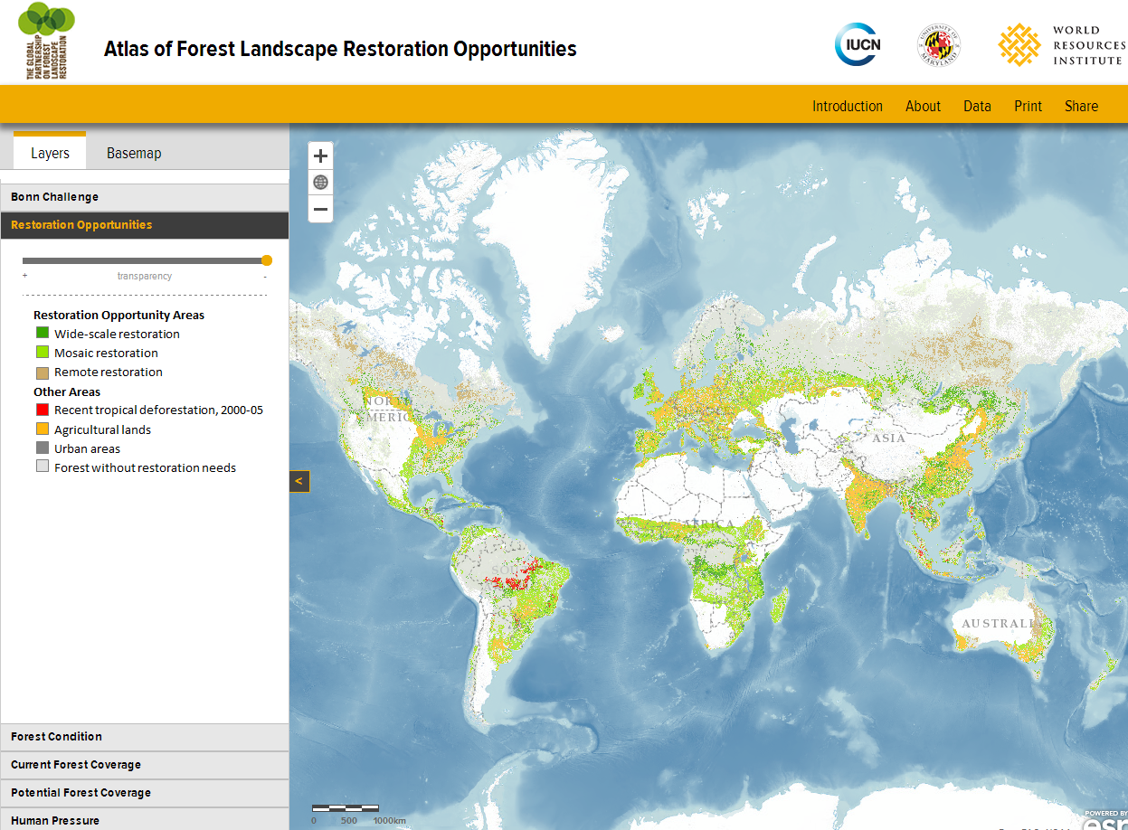 Global Atlas of Forest Landscape Restoration