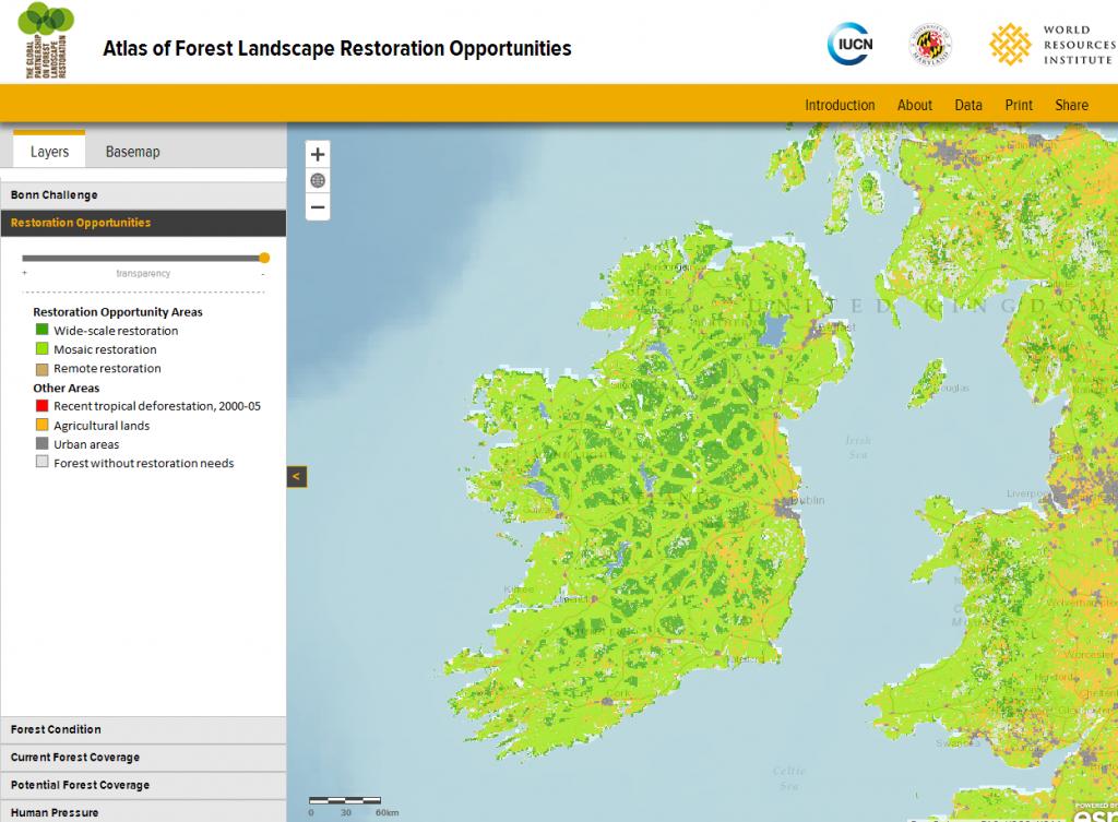 Ireland Restoration Opportunities