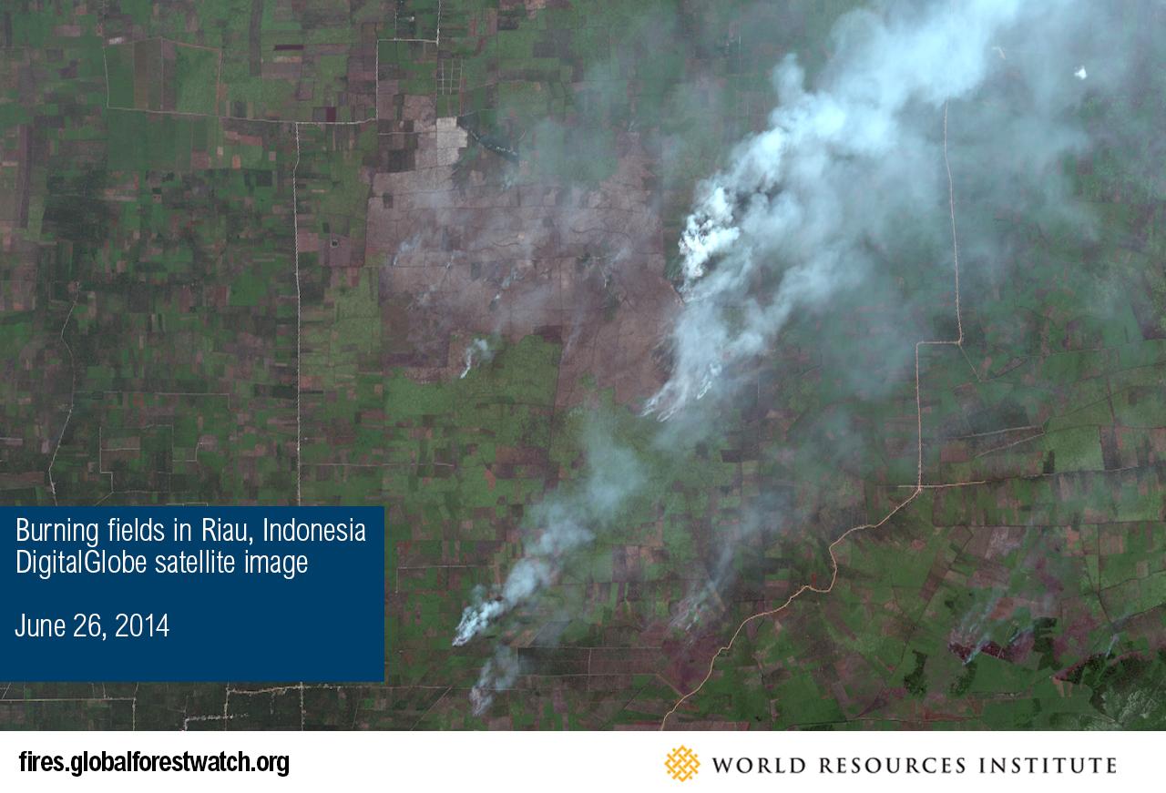 Burning fields in Riau, Indonesia