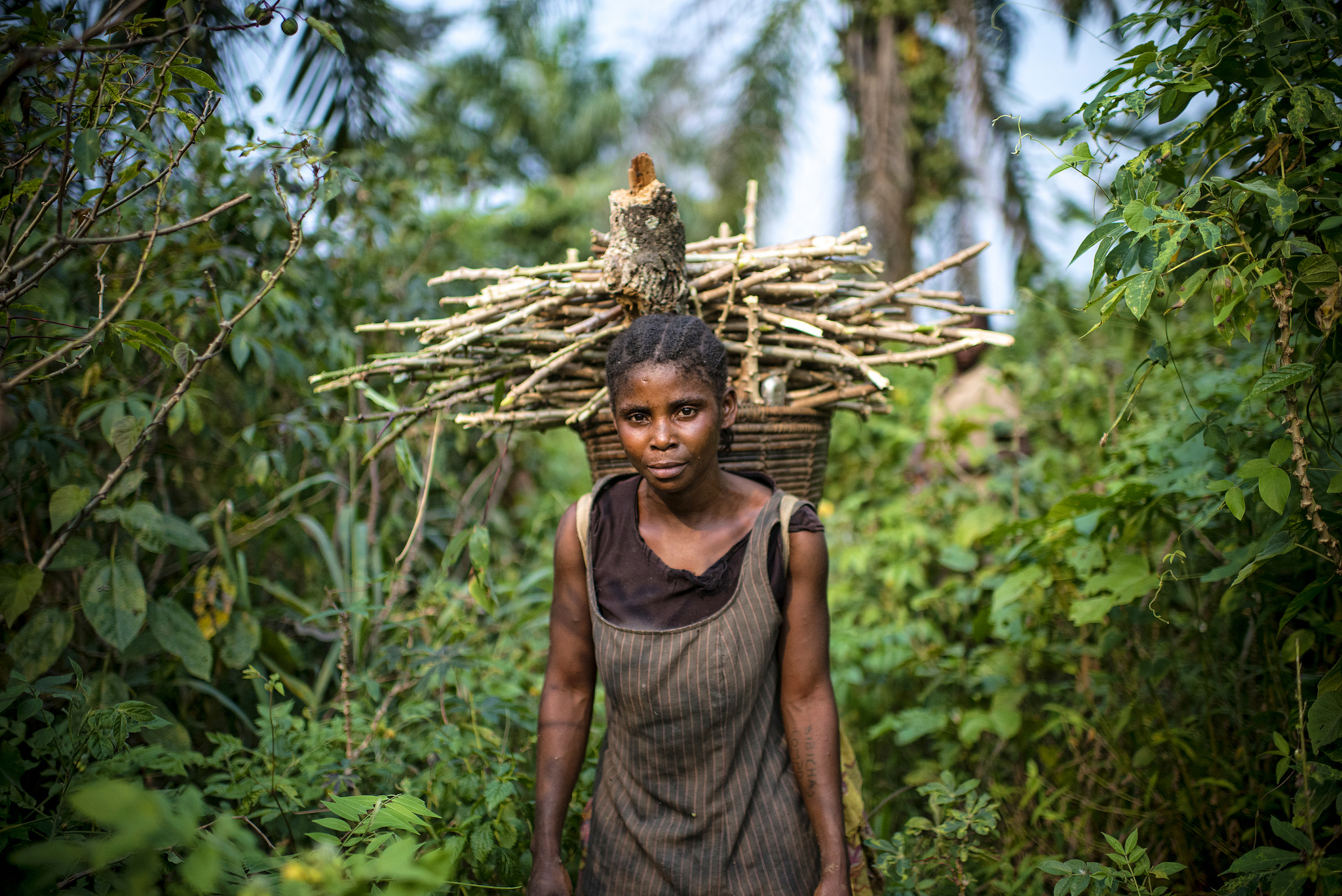 Woman carrying fuelwood, DRC