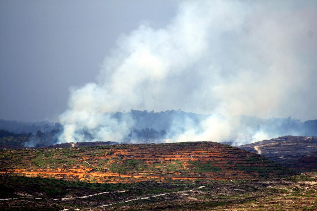 Kalimantan fire