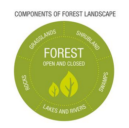 Intact Forest Landscapes Definition