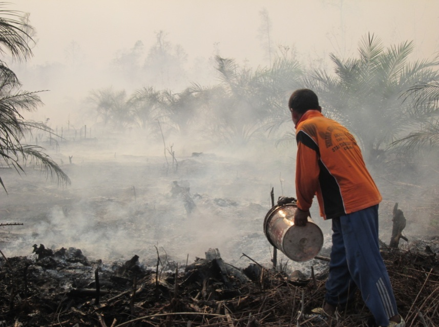 Indonesia_forest_fire