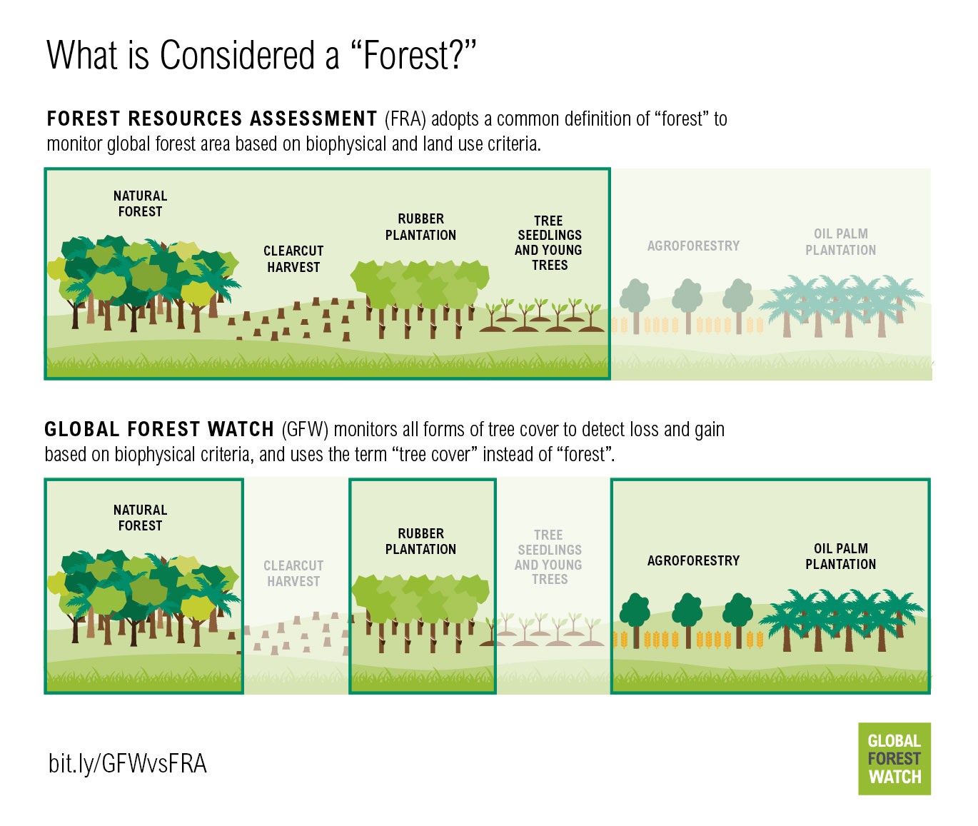 """What is considered a """"forest""""?"""