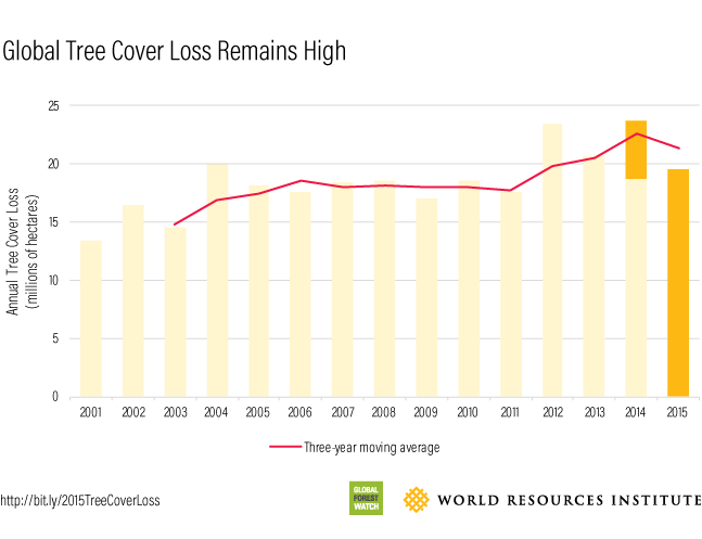 Global 2015 Tree Cover Loss