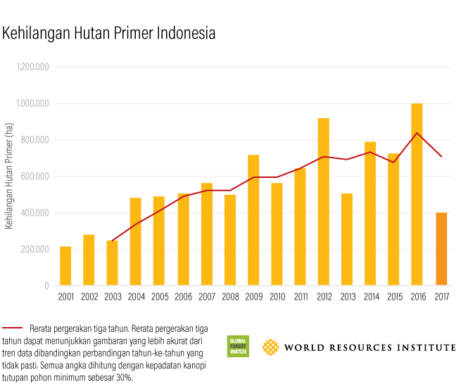 Global Forest Watch Indonesian Primary Forest Loss 2017