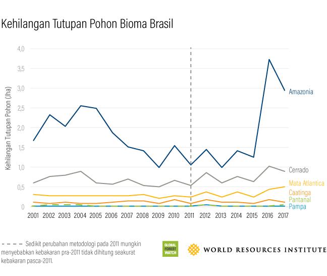 Global Forest Watch Brazilian Boimes Tree Cover Loss 2017