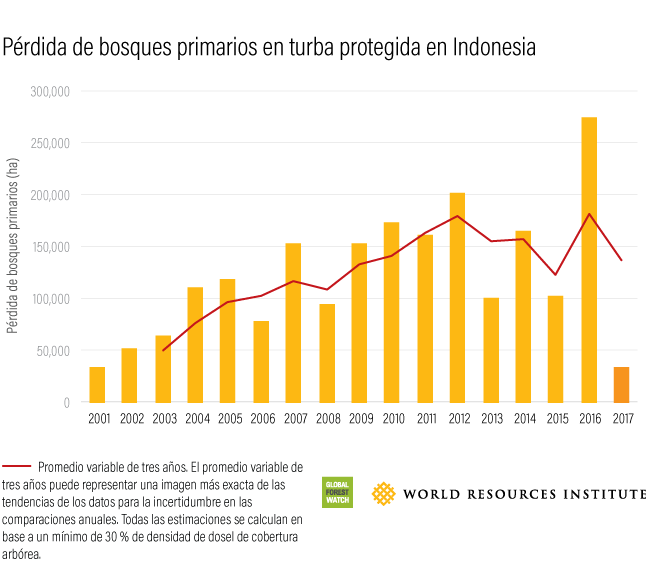 Global Forest Watch Indonesian Primary Forest Loss in Protected Peat 2017