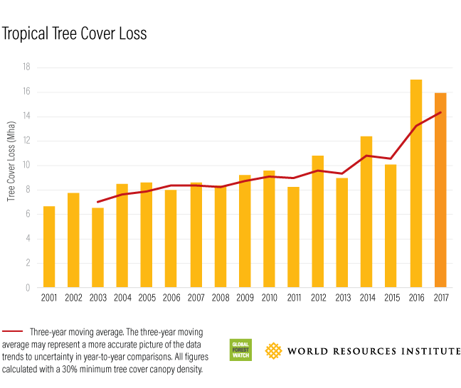 Global Forest Watch Tropical Tree Cover Loss 2017