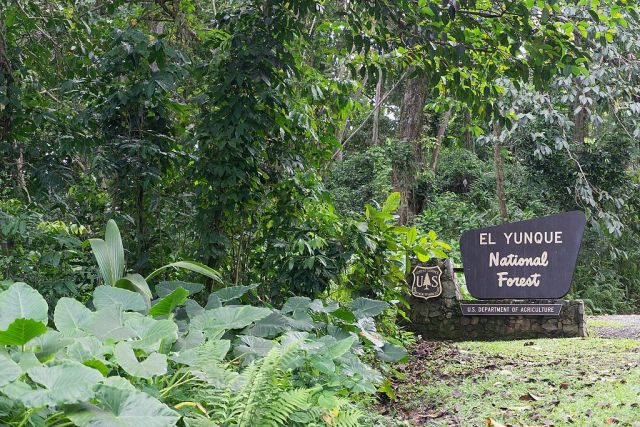 El_Yunque_National_Forest_sign_May_2017