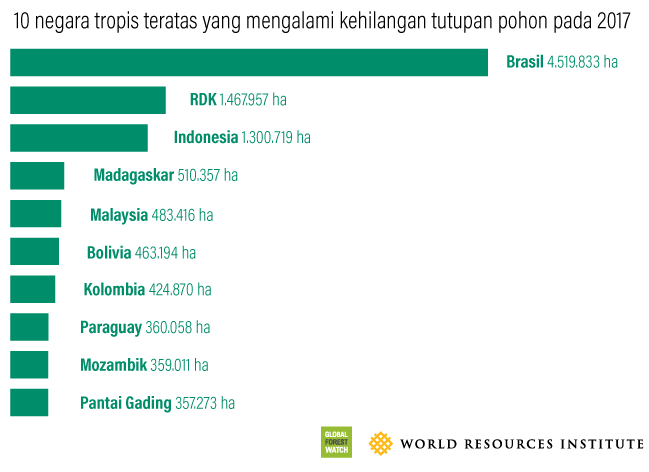 Top 10 Tropical Countries for Tree Cover Loss in 2017