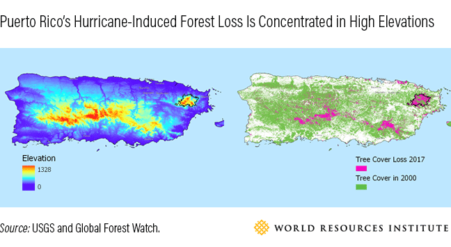 Puerto Rico's Hurricane Induced Forest Loss in High Elevation