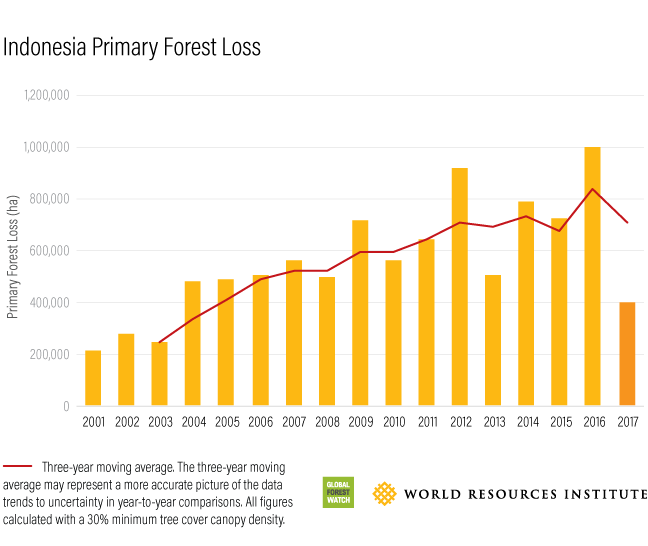graph of forest loss in Indonesia