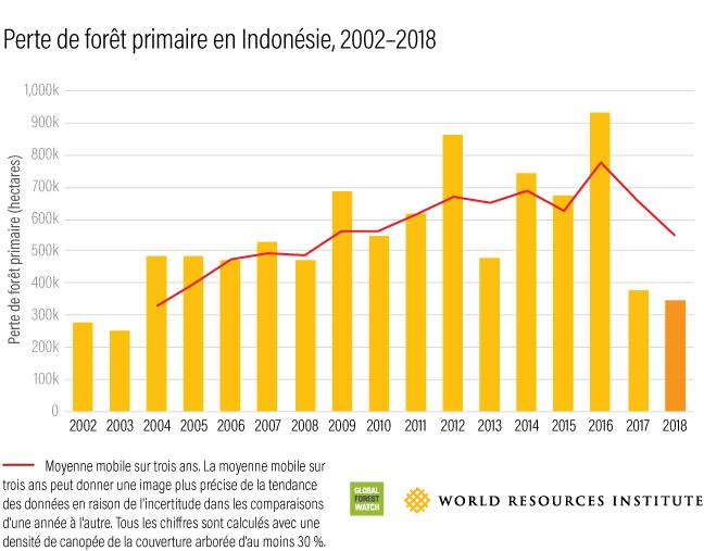 perte de foret primaire en indonesie