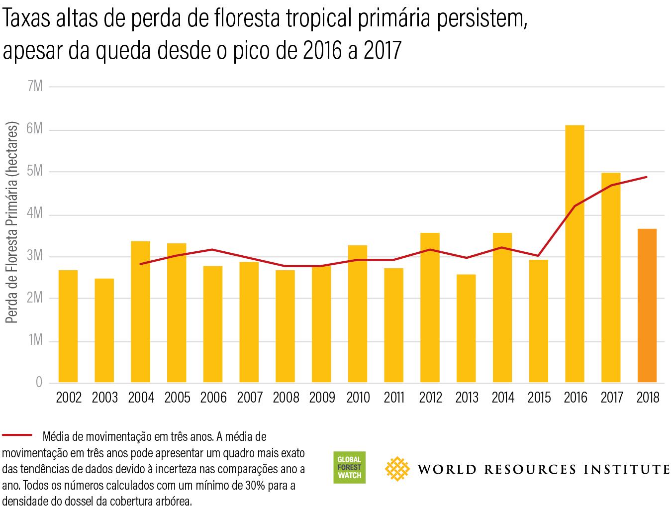 Taxas altas de perda de floresta tropical primaria persistem apesar da queda desde o pico de 2017 a 2017