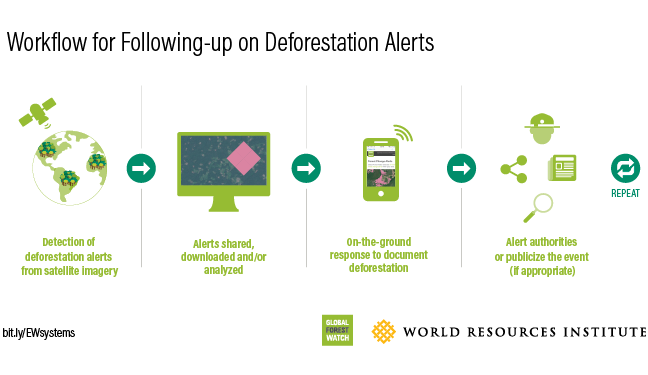workflow for following up with deforestation alerts