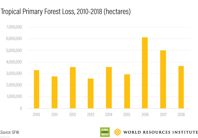 decade of forest loss