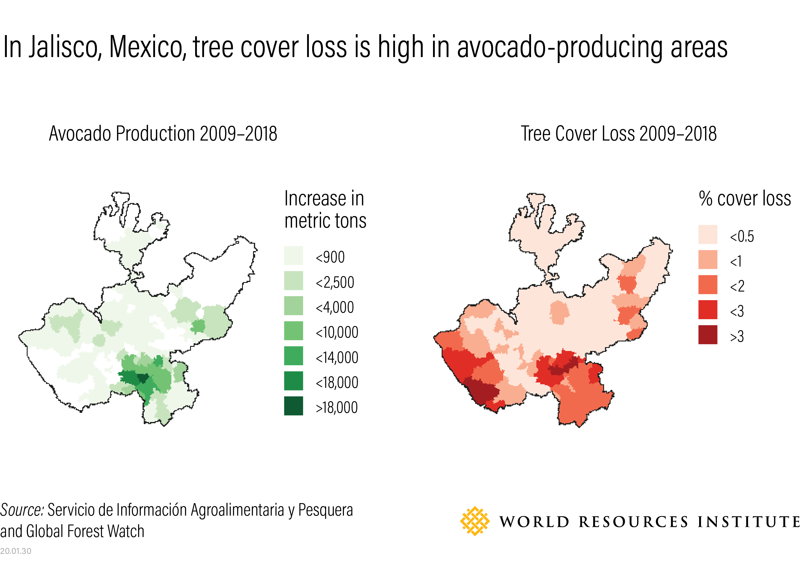 Tree cover loss and avocado production