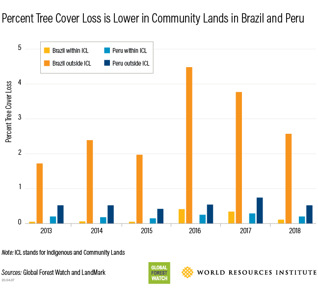 tree cover loss in Brazil and Peru Ingigenous lands