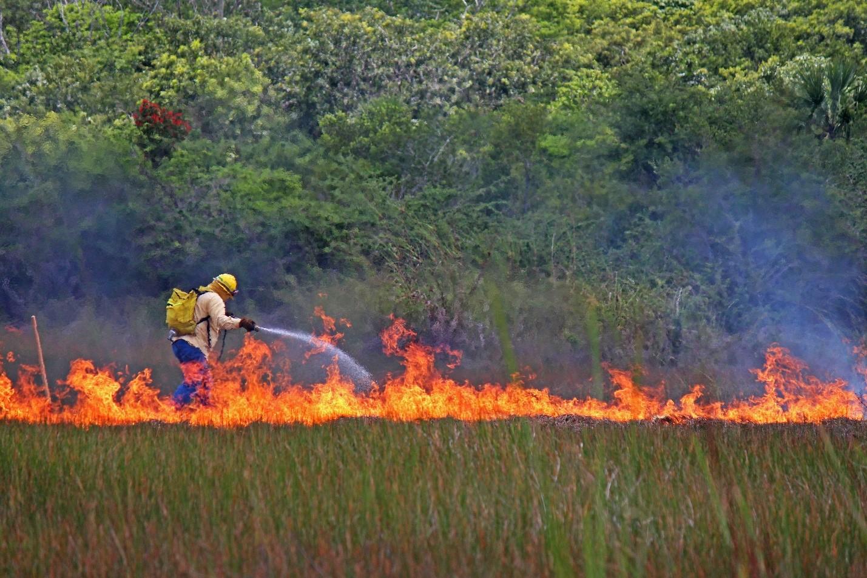 Incendios Yucatán