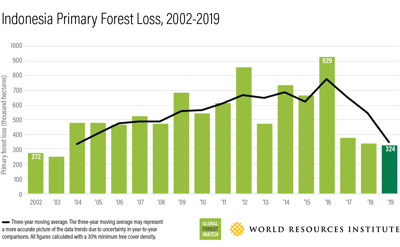 This bar chart shows how much forest has been lost in Indonesia annually between 2002 (272-thousand hectares) and 2019 (324-thousand hectares).