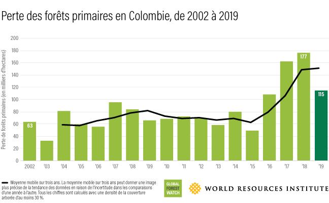 Ce graphique à barres montre combien de forêts ont été perdues en Colombie chaque année entre 2002 (63 000 hectares) et 2019 (115 000 hectares).
