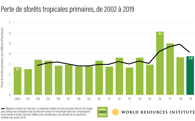 Ce graphique à barres montre la quantité de forêt perdue chaque année entre 2002 (2,7 millions d'hectares) et 2019 (3,8 millions d'hectares).