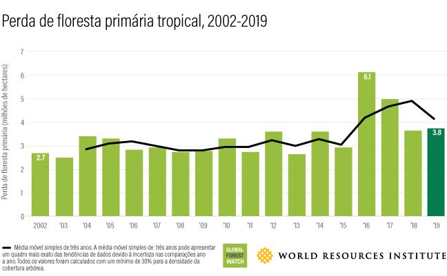 Este gráfico de barras mostra a quantidade de florestas perdidas anualmente entre 2002 (2,7 milhões de hectares) e 2019 (3,8 milhões de hectares).