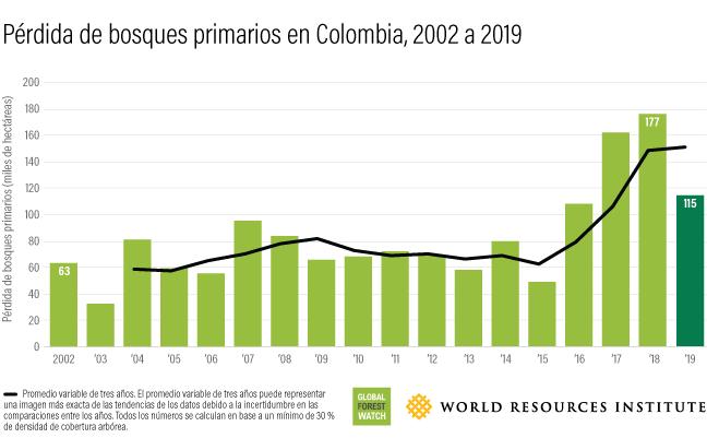 Este gráfico de barras muestra la cantidad de bosque que se ha perdido anualmente en Colombia entre 2002 (63 mil hectáreas) y 2019 (115 mil hectáreas).
