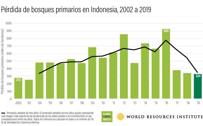 Este gráfico de barras muestra cuánto bosque se ha perdido en Indonesia anualmente entre 2002 (272 mil hectáreas) y 2019 (324 mil hectáreas).