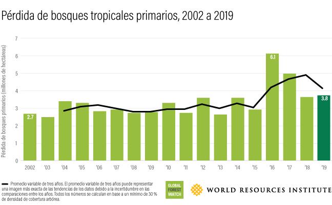 Este gráfico de barras muestra cuánto bosque se ha perdido anualmente entre 2002 (2.7 millones de hectáreas) y 2019 (3.8 millones de hectáreas).