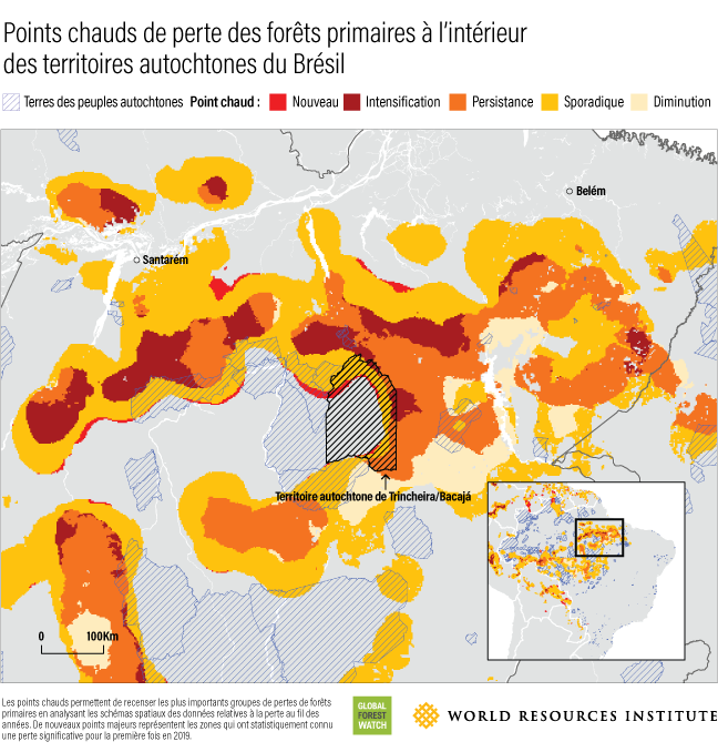 A map illustrates the concentrations of primary forest loss in Brazil's indigenous territories.