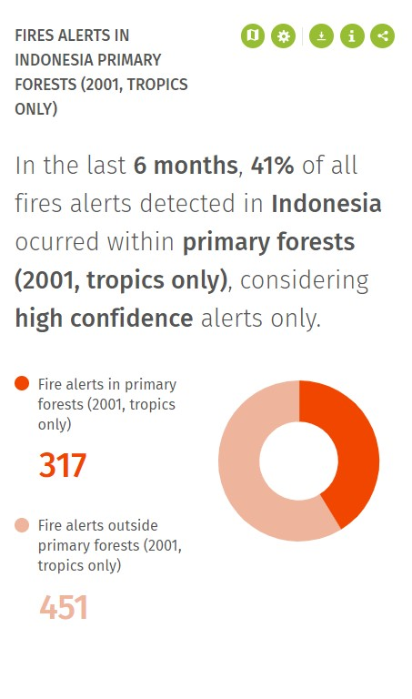 indonesia fire data for primary forests