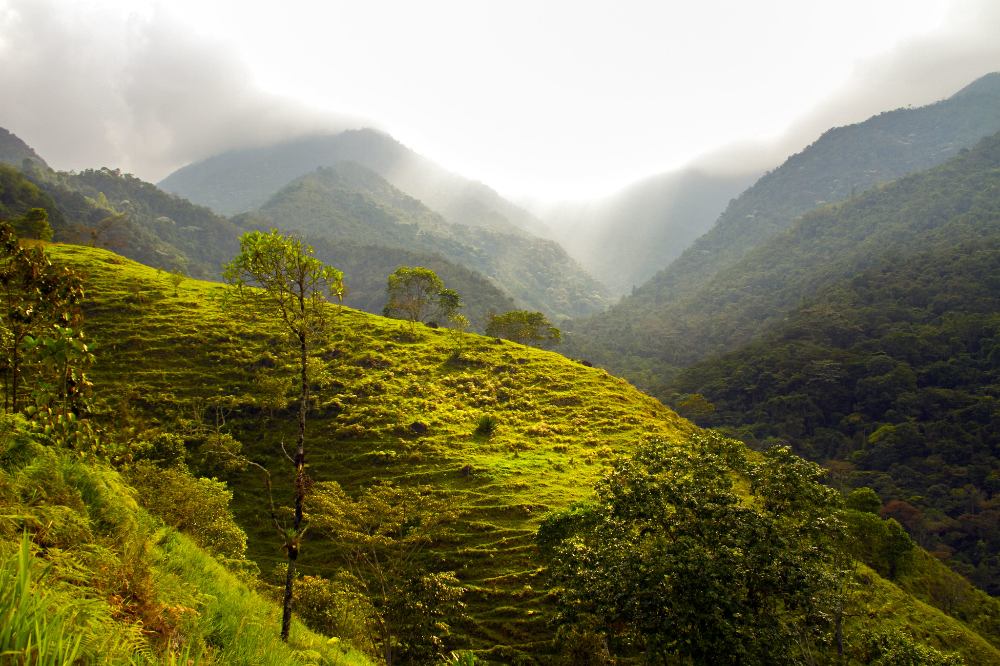 A farm landscape sits near a national park in Costa Rica