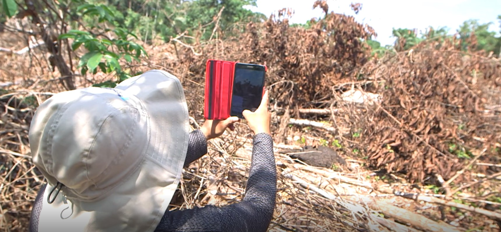 Indigenous community in Peru tests out the Forest Watcher Mobile App