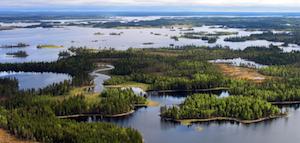 High Conservation Value Forests (HCVF) Web Portal