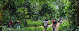 Paraguay Indigenous Lands