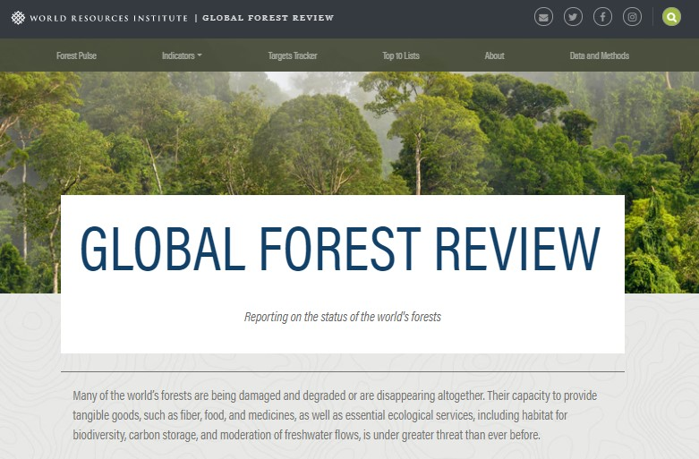 global forest review