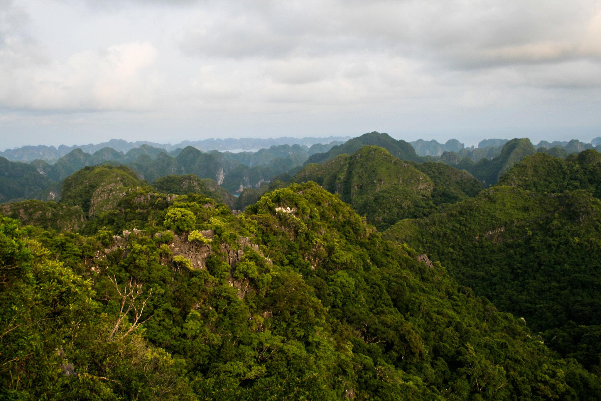 forest-landscape-vietnam-terry-sunderland-CIFOR