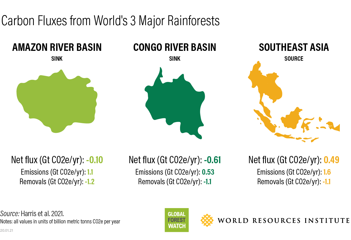 tropical rainforests carbon sinks are threatened