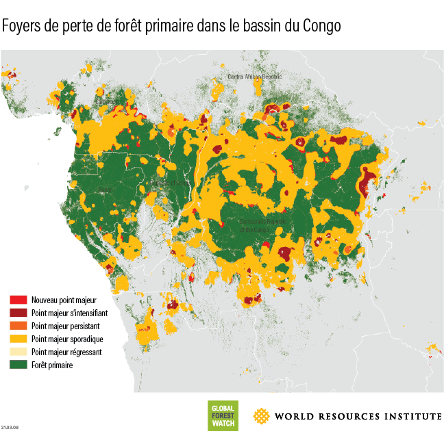 hots spots of primary forest loss in the DRC