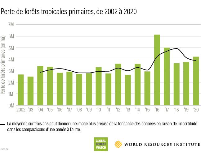 Tropical primary forest loss 2020 data