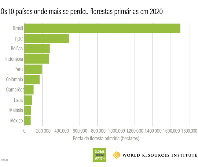 Top 10 countries for 2020 tree cover loss