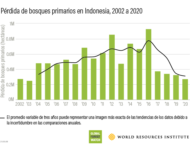 Indonesia tropical primary forest loss 2020