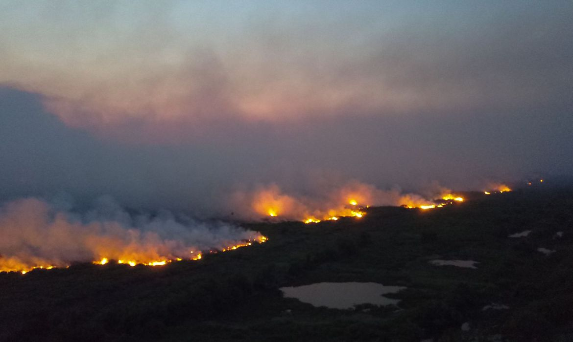 wildfires in pantanal wetlands